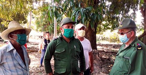 Aprovechar al máximo la cosecha de mangos en la provincia Santiago de Cuba.