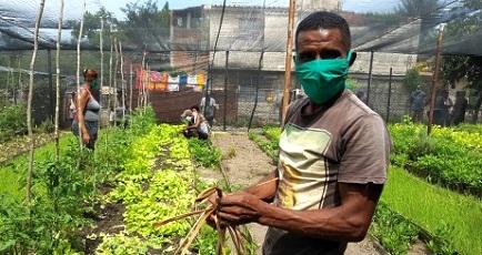 Eloyde Moya Verdecia, el Padre junto a su familia abastecen con verduras buena parte del reparto urbano Altamira de Santiago de Cuba. Foto: Santiago Romero Chang.